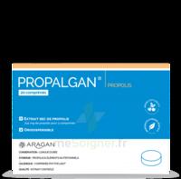 Aragan Propalgan Comprimés orodispersibles adulte B/20 à AUDENGE