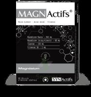 Synactifs Magnactifs Gélules B/60 à AUDENGE