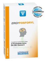 Ergyfosforyl Caps B/60 à AUDENGE