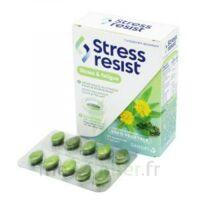 Stress Resist Comprimés Stress & fatigue B/30 à AUDENGE