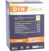 Synactifs Dyngreen Bio Gélules B/30 à AUDENGE