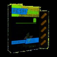 Synactifs Respigreen Bio Gélules B/10 à AUDENGE