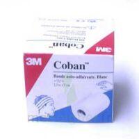 COBAN, blanc (ref. 1582 W) à AUDENGE