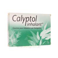 CALYPTOL INHALANT, émulsion pour inhalation par fumigation à AUDENGE