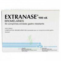 EXTRANASE 900 nK, comprimé enrobé gastro-résistant à AUDENGE