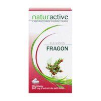 ELUSANES FRAGON 200 mg, gélule à AUDENGE