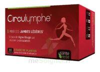 Santé Verte Circulymphe Triple Actions B/60 à AUDENGE