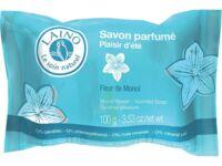 LAINO SAVON PARFUME PLAISIR D'ETE 100G à AUDENGE