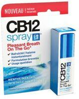 CB 12 Spray haleine fraîche 15ml à AUDENGE
