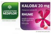 KALOBA 20 mg Comprimé pelliculé Plq/21 à AUDENGE
