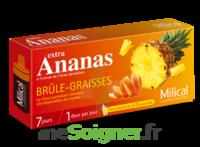MILICAL ANANAS BRULEUR DE GRAISSE à AUDENGE