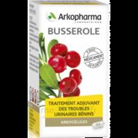 Arkogelules Busserole Gélules Fl/45 à AUDENGE