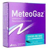 METEOGAZ Poudre orodispersible 20 sticks à AUDENGE