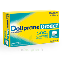 DOLIPRANEORODOZ 500 mg, comprimé orodispersible à AUDENGE
