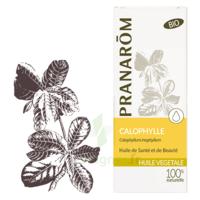 PRANAROM Huile végétale bio Calophylle 50ml à AUDENGE