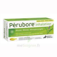 PERUBORE Caps inhalation par vapeur inhalation Plq/15 à AUDENGE