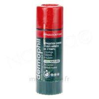 Dermophil Indien Réparation Forte Lèvres 4 g à AUDENGE