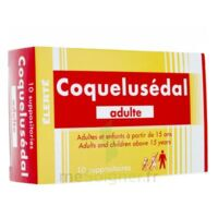 COQUELUSEDAL ADULTES, suppositoire à AUDENGE