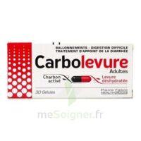 CARBOLEVURE Gélules adulte Plq/30 à AUDENGE