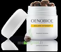 Oenobiol Solaire Intensif Caps Pots/30 à AUDENGE