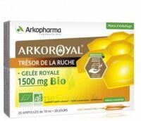 Arkoroyal Gelée Royale Bio 1500 Mg Solution Buvable 20 Ampoules/10ml à AUDENGE