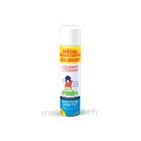 Clément Thékan Solution insecticide habitat Spray Fogger/300ml à AUDENGE