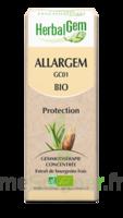 Allargem Solution Buvable Bio 30ml à AUDENGE