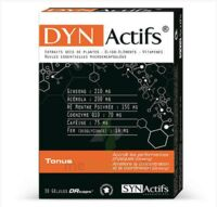 Synactifs Dynactifs Gélules B/30 à AUDENGE