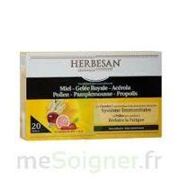 Herbesan Système Immunitaire 30 ampoules à AUDENGE