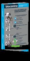 Biocanipro Collier chien B/1 à AUDENGE