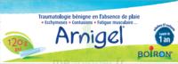 Boiron Arnigel Gel T/120g à AUDENGE
