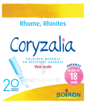 Boiron Coryzalia Solution buvable unidose B/20 à AUDENGE