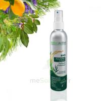Naturactive Assaini'spray 200ml à AUDENGE