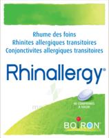 Boiron Rhinallergy Comprimés B/40 à AUDENGE
