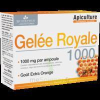 3 Chenes Phytotherapie Familiale Solution Buvable Gelée Royale 1000 10 Ampoules/10ml à AUDENGE