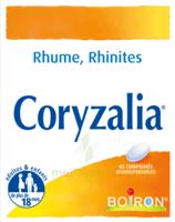 Boiron Coryzalia Comprimés orodispersibles à AUDENGE
