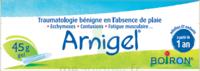 Boiron Arnigel Gel T/45g à AUDENGE